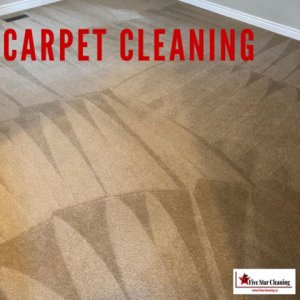 Carpet cleaning GTA 5 star cleaning
